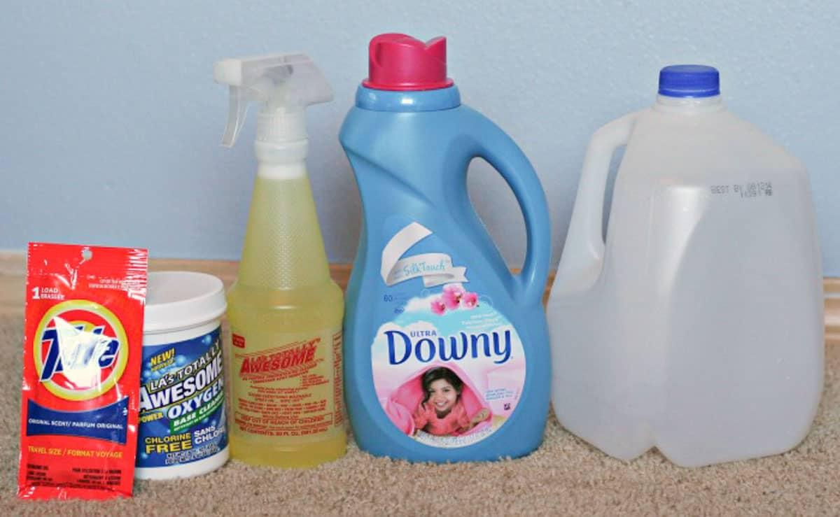 ingredients-for-homemade-carpet-cleaner-recipe